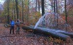 Der Wassersteinbruch wird ausgepumpt - Tag 1