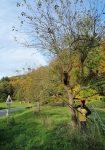 Einsatz im Stettbacher Tal