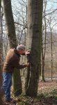 Waldrundgang mit Forstwissenschaftler Martin Bertram