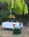 Grüner Hahn - Gottesdienst im Pfarrfeld am Blütenhang