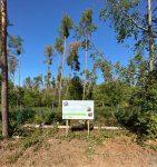 Wald in Pflege durch den NABU - Neues Hinweisschild am Waldfriedhof