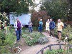 Führung im Bauerngarten