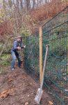 Winterweide für die NABU-Schafe wird vorbereitet