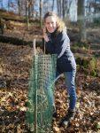 NABU Waldgruppe schützt junge Eichen