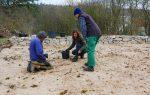 HORTUS-Projekt: Beimpfung einer Sanddüne