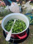 Die Füchse kochen Bärlauch Brennessel Suppe
