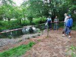 Pflegeeinsatz am Amphibienteich auf NABU-Grundstück