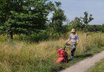 Einsatz im NABU Kirschgarten I