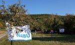 Apfelkelterei im Kirschgarten am Blütenhang