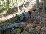 Wühlmaus-Einsatz am Waldweiher