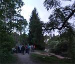Fledermausexkursion  am Waldweiher