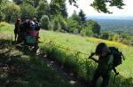 Die Feuersalamander zelten im Wald bei Malchen