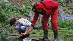 Hermeline retten Molche