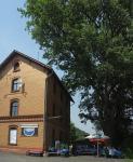 Fledermausfest im Mausohr-Bahnhof Mümling-Grumbach